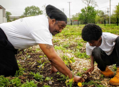 A older black man helping a young black child plant some vegetables.