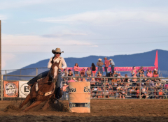 An image of a rodeo on a bright day