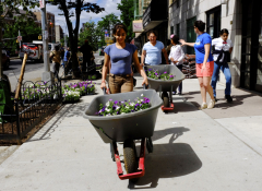 Students wheel flowers through the neighborhood during a beautification project in the Bronx.