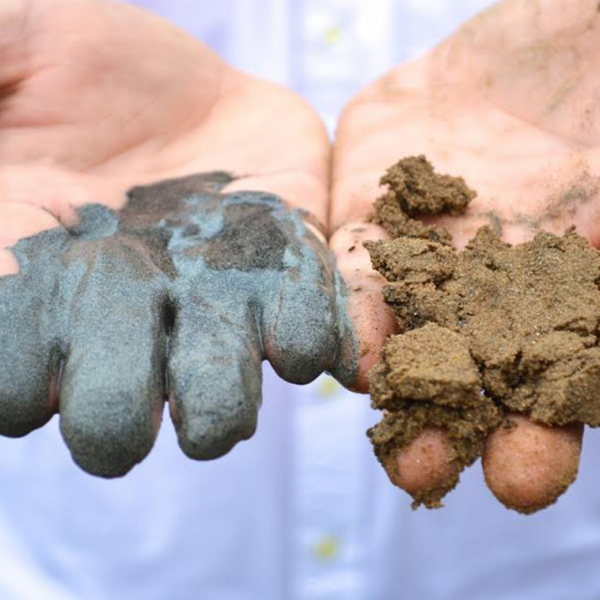 Two hands covered in coal ash